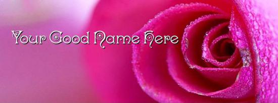 Awesome Pink Rose Facebook Cover Photo With Name