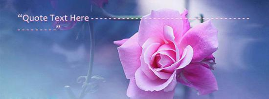 Beautiful Pink Flower Facebook Cover Photo With Name