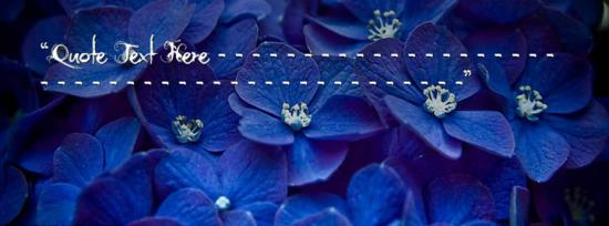 Blue Flowers Facebook Cover Photo With Name