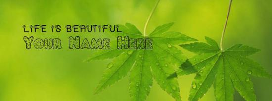 Life is Beautiful Facebook Cover Photo With Name