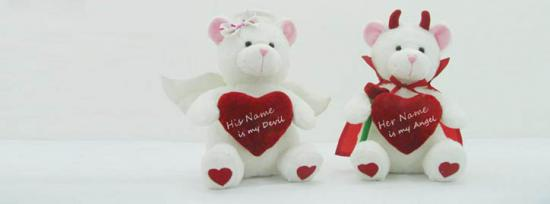 Lovely Teddy Couple Facebook Cover Photo With Name