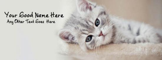 Sad Cat Facebook Cover Photo With Name