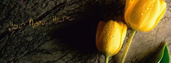 Tulip Flower Facebook Cover Photo With Name