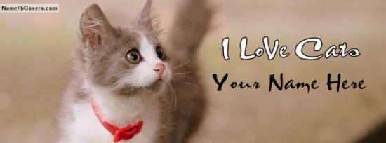 Lovely Cute Cat Facebook Cover Photo With Name