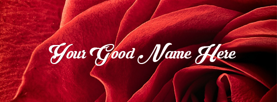 Red Rose Closeup Facebook Cover Photo With Name