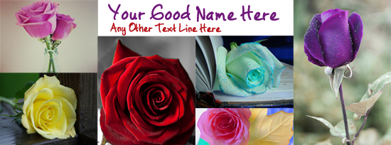 Roses Facebook Cover Photo With Name