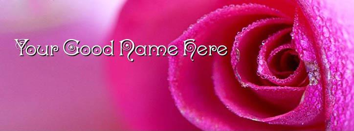 Awesome Pink Rose Facebook Cover With Name