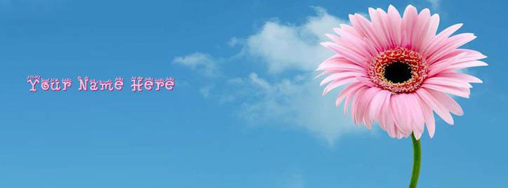 Beautiful Pink Flower Facebook Cover With Name