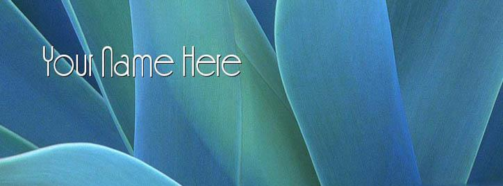 Blue Flower Leaves Facebook Cover With Name