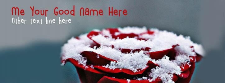 Rose and Snow Facebook Cover With Name