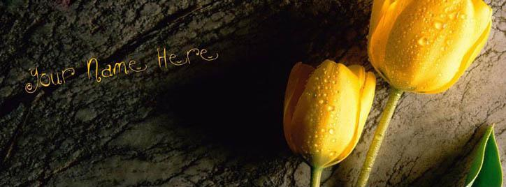 Tulip Flower Facebook Cover With Name