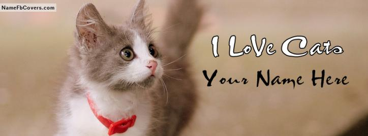 Lovely Cute Cat Facebook Cover With Name