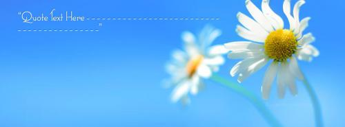 Beautiful White Flower Facebook Cover