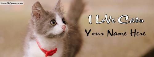 Lovely Cute Cat Facebook Cover