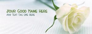 Beautiful White Rose Name Cover