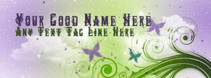 Butterflies and shining stars Name Facebook Cover