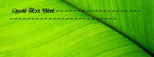 Green Leaf Closeup Name Cover