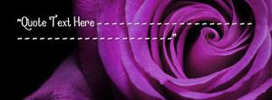 Purple Rose Name Cover