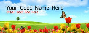 Red Yellow Flowers Name Cover
