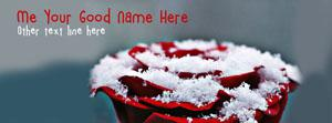 Rose and Snow Name Cover