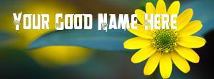 Macro Yellow Flower Name Facebook Cover