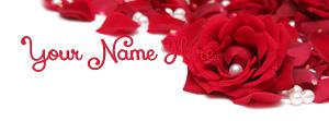 Rose Pearls Name Cover