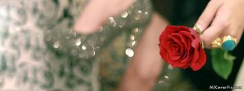 Beautiful Flower In Hand Fb Cover Photos