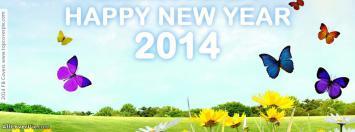 Beautiful New Year 2014 FB Covers