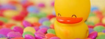 Cute Duck Facebook Cover Photo