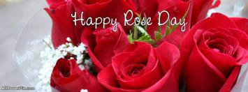 Happy Rose Day 2014 Covers For FB