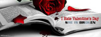 I Hate Valentines Day 2014 FB Covers