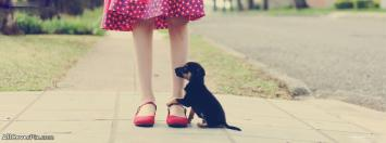 Sweet Puppy Facebook Pets Covers Photo