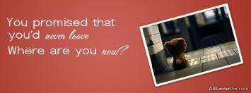 Missing You Facebook Timeline Cover Photos