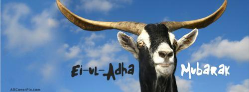 Eid ul Adha 2014 fb covers -  Facebook Covers