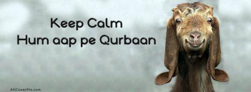 Eid ul Adha Funny FB Cover -  Facebook Covers