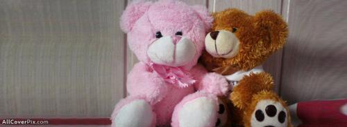 Awesome Cute Teddy Cover Photos -  Facebook Covers