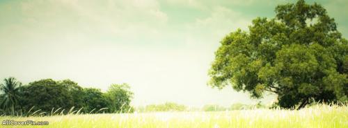 Landscape FB Cover Photos -  Facebook Covers