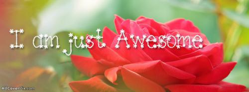 Top Beautiful Flowers Quotes Photos For Fb Covers -  Facebook Covers