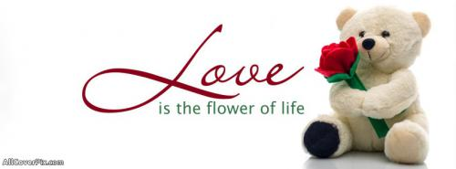 Cute Lovely FB Cover Photos -  Facebook Covers
