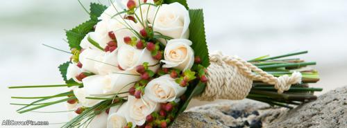 Beautiful Flower Cover Photos For Facebook -  Facebook Covers
