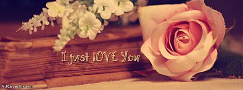 Beautiful Flowers Photos Facebook Timeline -  Facebook Covers