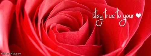 Beautiful Love Facebook Covers -  Facebook Covers