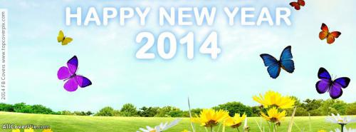 Beautiful New Year 2014 FB Covers -  Facebook Covers