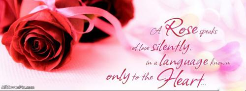 Cute Lovely Quote Facebook Cover Photos -  Facebook Covers
