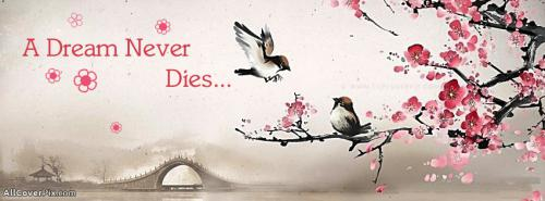 Dream Never Dies Quote Cover for FB -  Facebook Covers