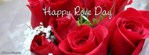 Happy Rose Day 2014 Covers For FB -  Facebook Covers