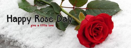 Happy Rose Day 7th Feb 2014 Facebook Covers -  Facebook Covers