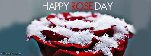 Happy Rose Day FB Covers -  Facebook Covers