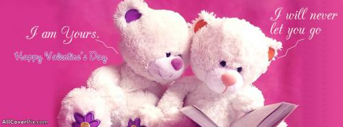 Lovely Teddy Couple Valentines Day Covers -  Facebook Covers