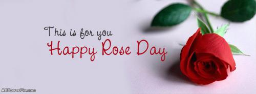 Rose Day 2014 Facebook Covers 7th February -  Facebook Covers